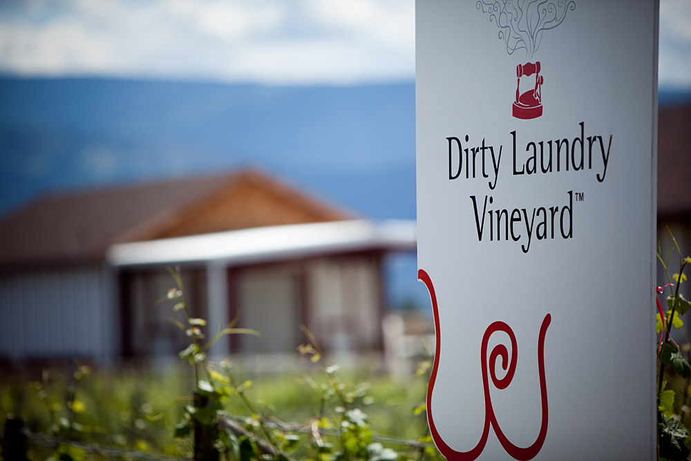 Dirty Laundry Vineyard
