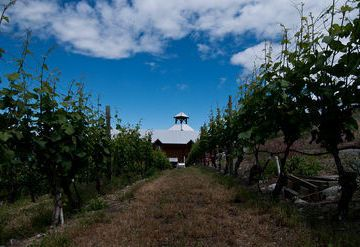 Hillside Cellars Winery
