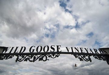 Wild Goose Vineyards